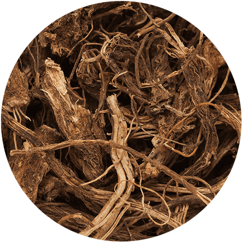 Pure Coleus Forskohlii Root Extract